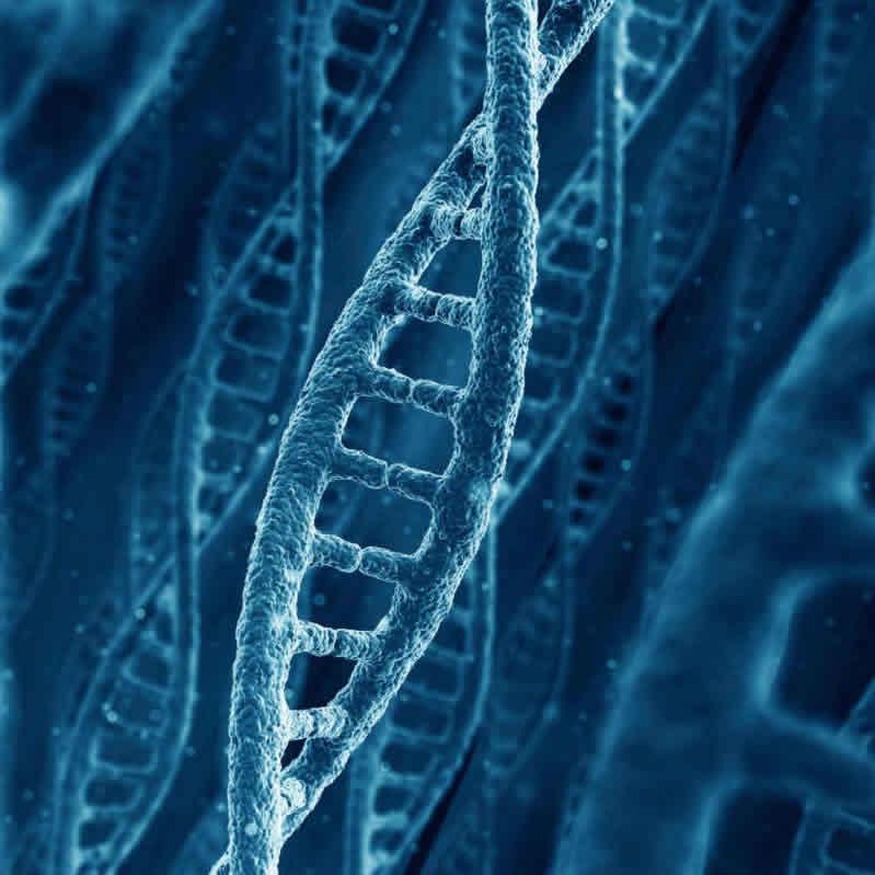 Alzheimer. La causa, hoy por hoy, es desconocida. Aunque cada vez más, se acepta la teoría con base genética.